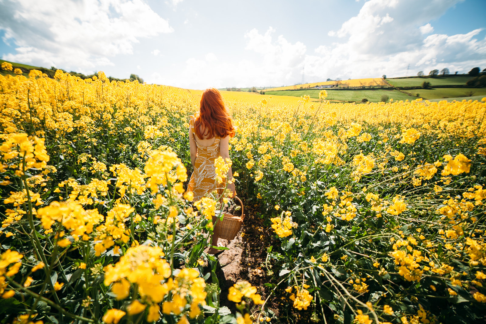 yellow dress field-30