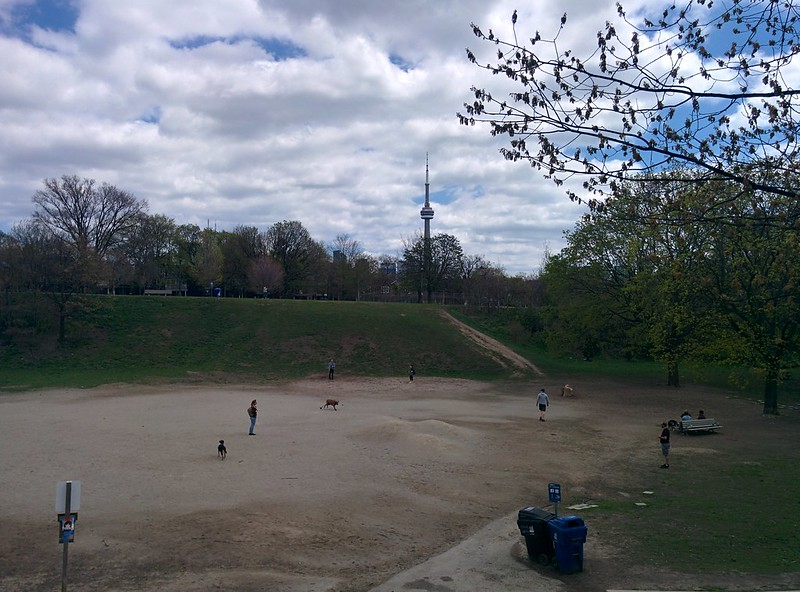 Pit #toronto #spring #trinitybellwoods #parks #garrisoncreek #cntower #latergram