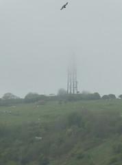 Whitehawk Hill Transmitter