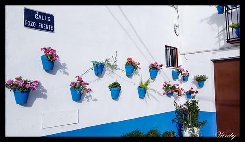 Calle Pozo Fuente