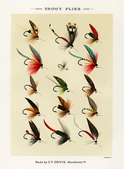 Trout Flies from Favorite Flies and Their Histories by Mary Orvis Marbury. Digitally enhanced from our own original 1892 Edition.