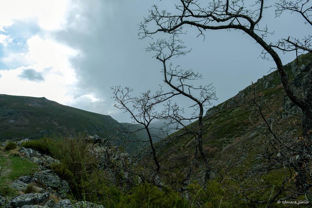 53.- 2018.- Sanábria - Caminhada Vados de San Ciprián (292)