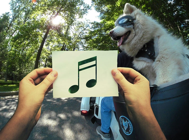 11_May__Music-resized