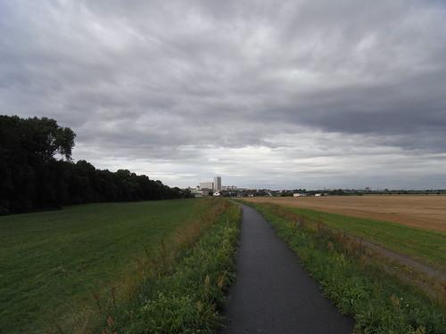 20100827 028 0107 Jakobus Damm Feld Wiese Bäume Strehla Wolken