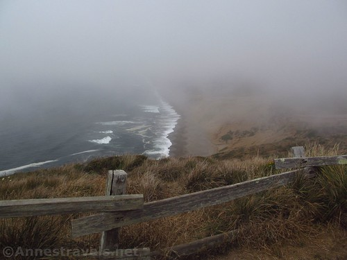 Misty views of the beach at Point Reyes National Seashore, California