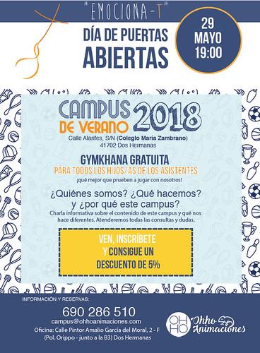 Cartel Campus de Verano del Colegio María Zambrano