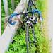 Rob Telfer Bike.