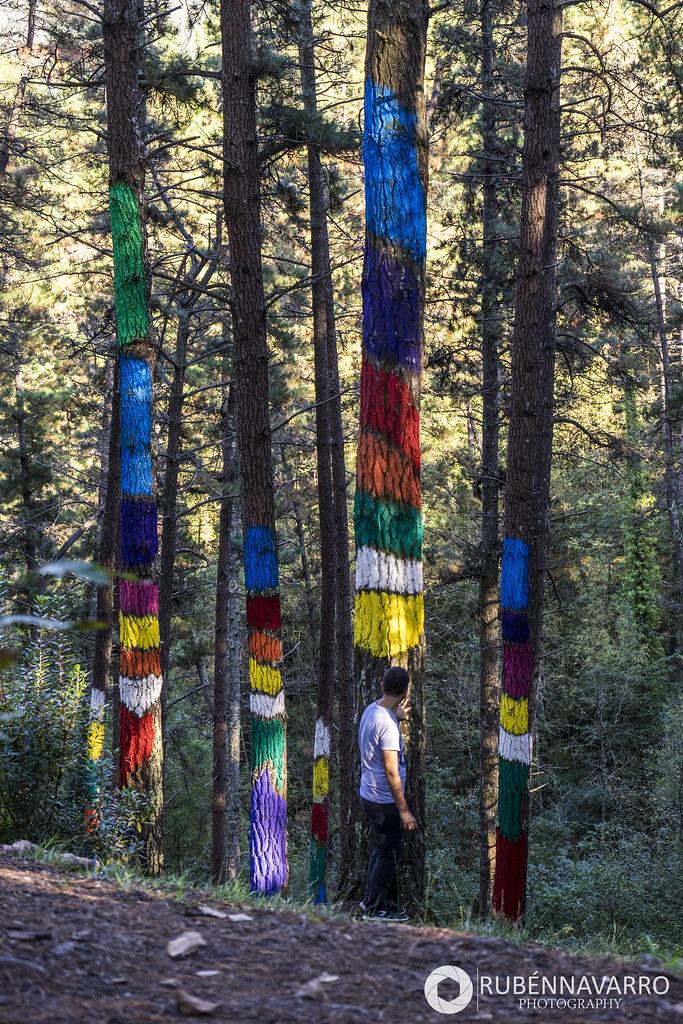 pinturas en el Bosque de Oma
