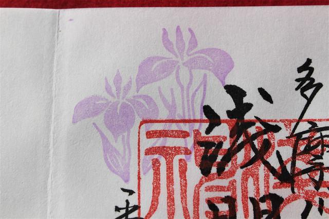 tamagawa-gosyuin5023