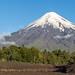 12. Volcan Osorno, Chile-17.jpg