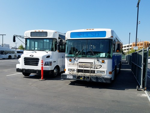 UC San Diego Buses - Blue Bird on right