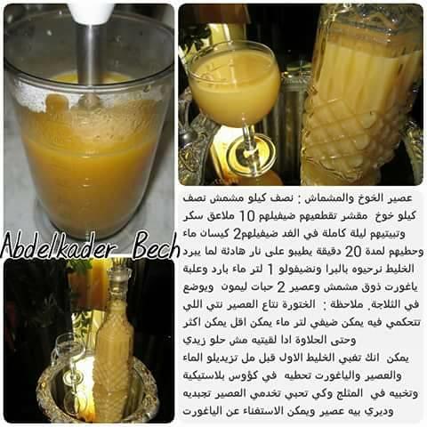 عصير الخوخ والمشماش-017