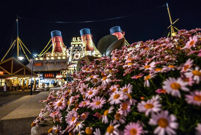 Steamship flowers night TDS