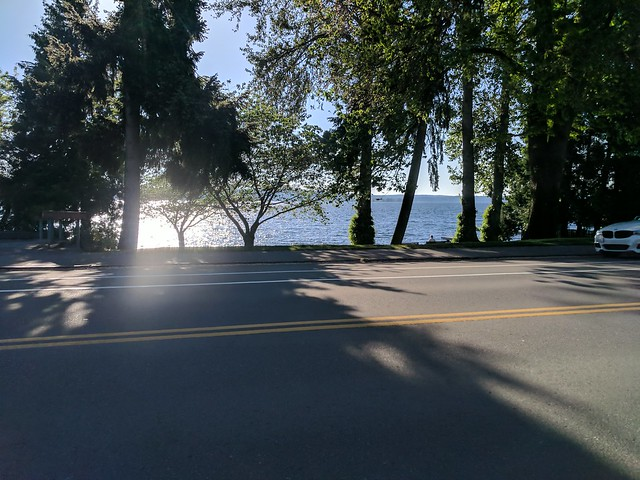 Diary of a Commute Bike: Pretty Lake Washington