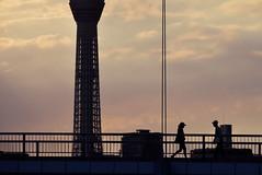 Tokyo skytree and Fureai bridge