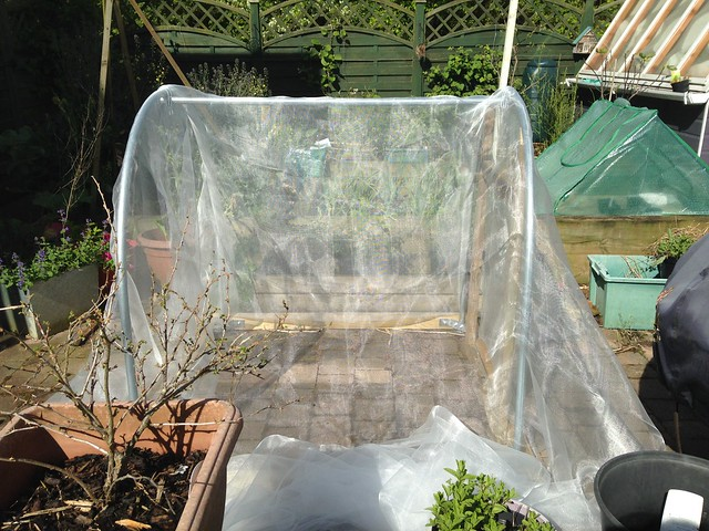 Covering the polytunnel