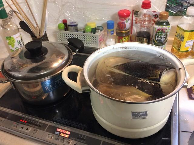 Boil Takenoko