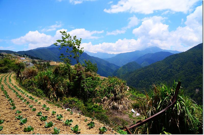 平岩山展望 2