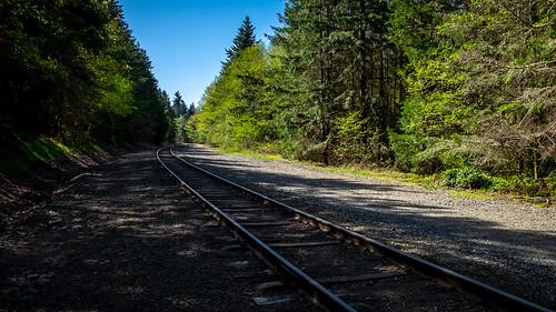 mukiteo mukilteo washington unitedstates us landscape forest railroadtracks spring trinterphotos richtrinter northwest japanesegulch