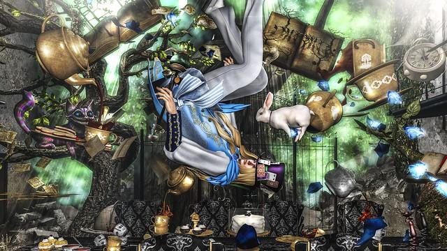 falling Alice(ALBERT)