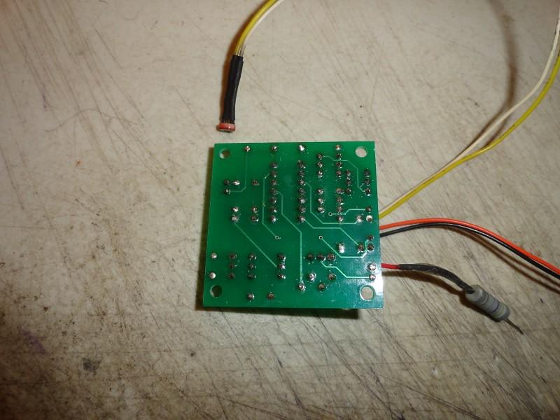 DSC00425 (800x600)
