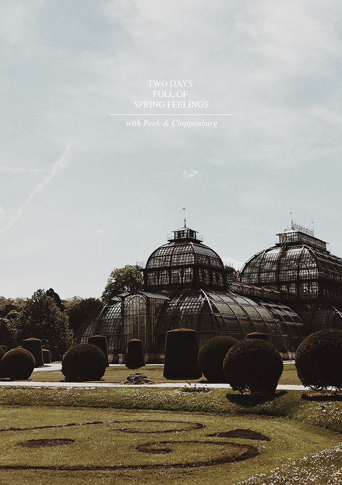Spring-Event-P&C-Wien-3