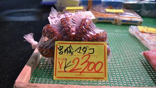 438 Tsukiji, Mercado de pescado en Tokio (29)