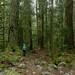 J on the trail by Scrambler27