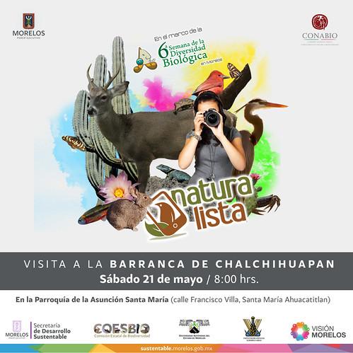 Naturalista. Barranca Chalchihuapan
