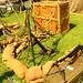 Caldicot Castle Wartime Wheels 074