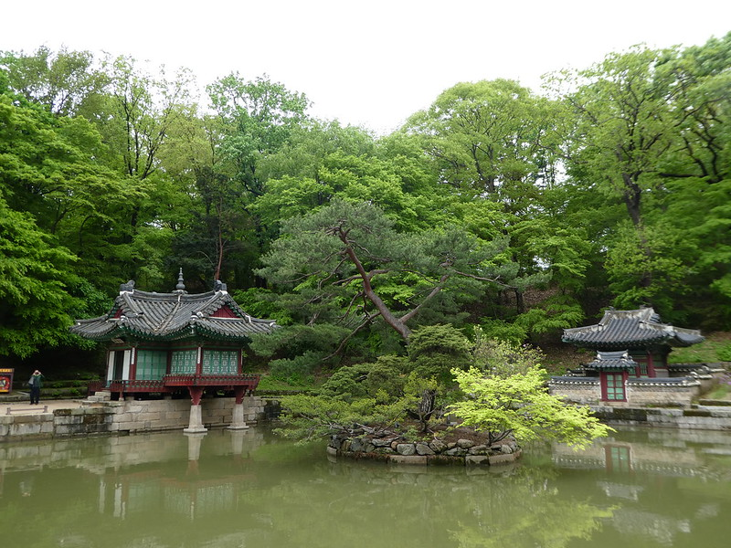 Secret Garden tour, Changdeokgung Palace, Seoul