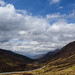 Scotland-4762.jpg