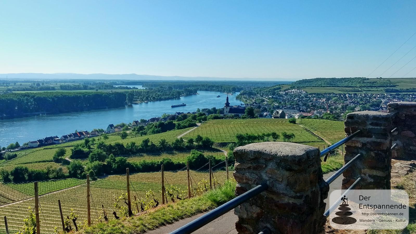 Blick von Fockenberghütte auf Nierstein und Rhein