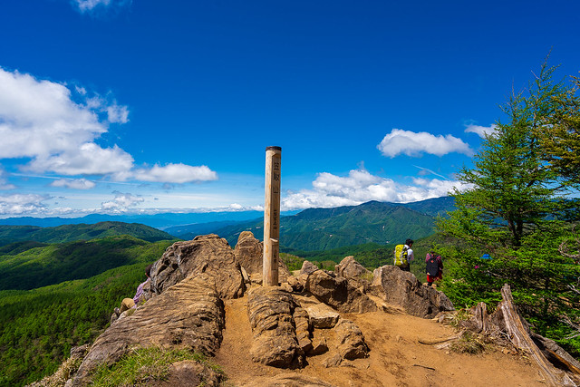 笠取山の西側の肩