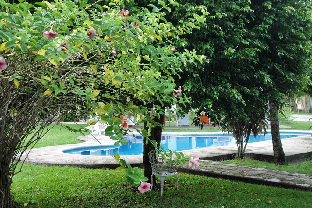 Palenque - Kin-Ha - Garden