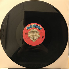 BIZ MARKIE:YOUNG GIRL BLUEZ(RECORD SIDE-A)