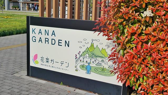 花菜ガーデン入り口