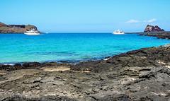 Lava field on Santiago Island (San Salvador Island), Galapagos