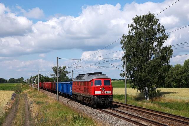 DB 233 314 + Güterzug/goederentrein/freight train  - Jeserich