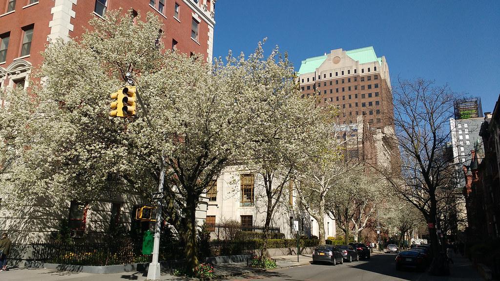 April-22_1-Spring-on-sunny-side