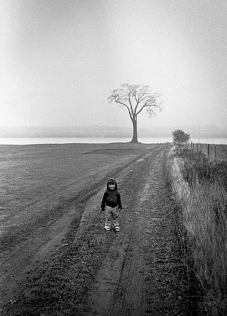 Kate and the Horton Landing elm, 1973