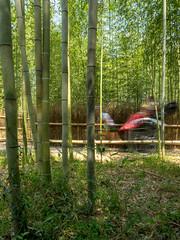 Rickshaw in the Bamboo Grove - Kyoto