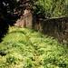 18-Sienne-052018-3132.jpg