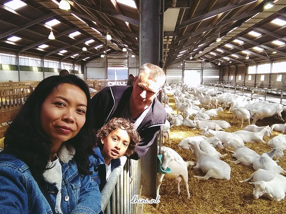 Geitenboerderij De Mekkerstee