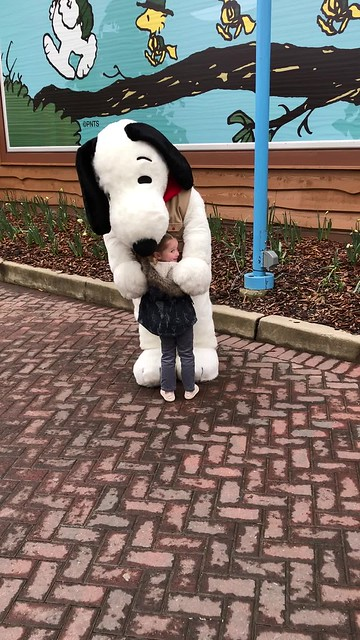 meetingsnoopy.mp4