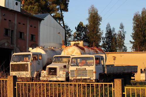 Campo de Besteiros, Portugal