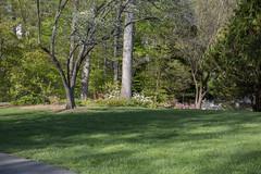 Brookside Gardens 1 May 2018  (316)