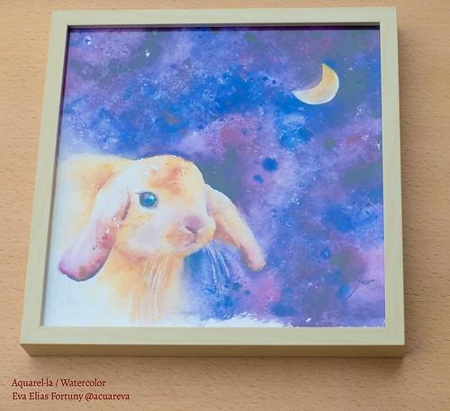 Conill i lluna. Aquarel·la infantil de l'Eva Elias emmarcada en marc de fusta.