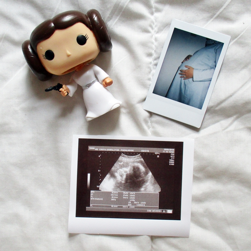 Pregnancy Update #2 | Hola Darla