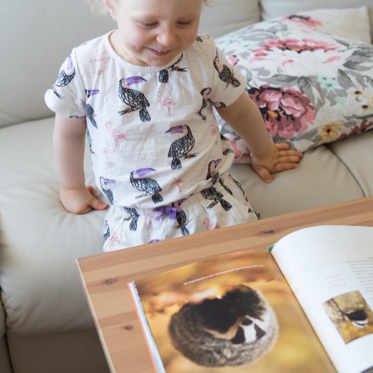 Lapsen oma eläinkirja 1